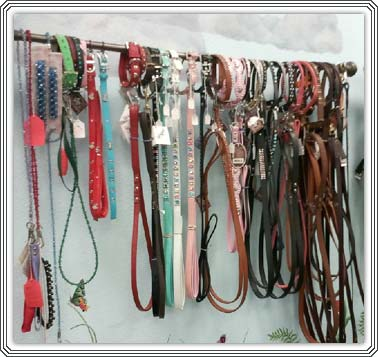 Botique Product Dog Leashes and Collars
