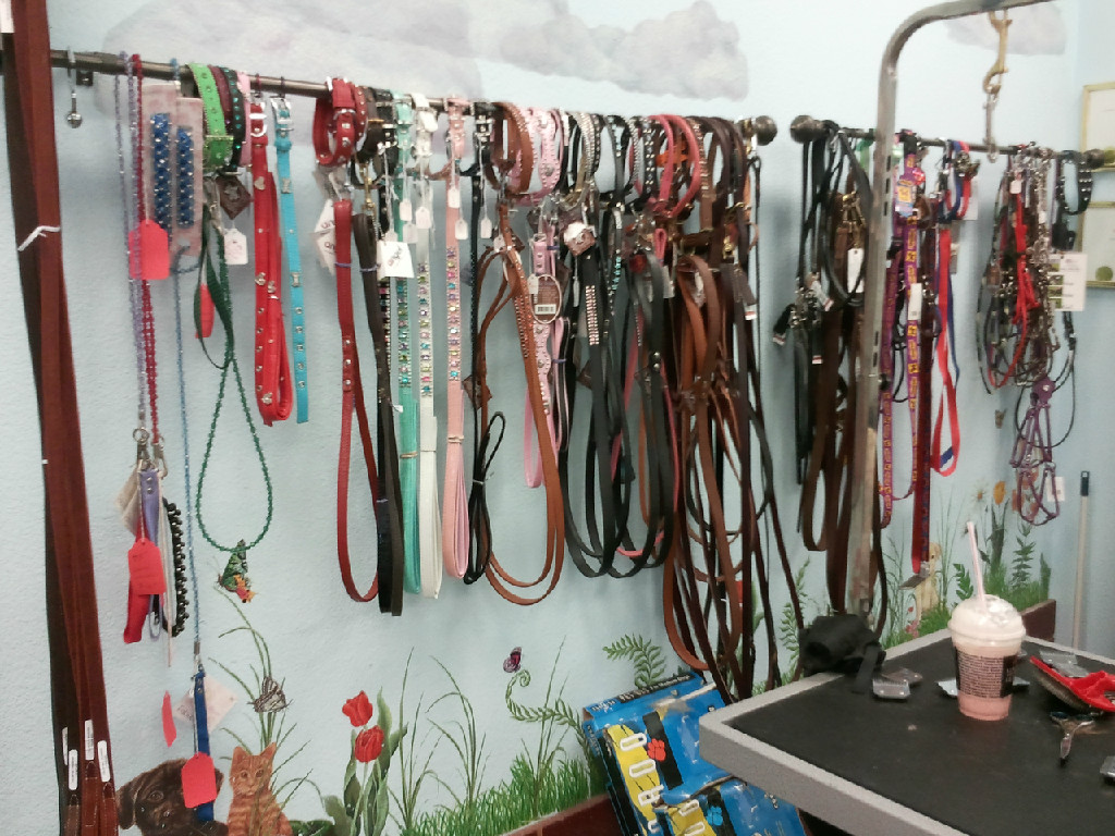 Dog and Cat Collars and leads
